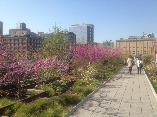 Early morning on the High Line. C. Nelson, 2013.