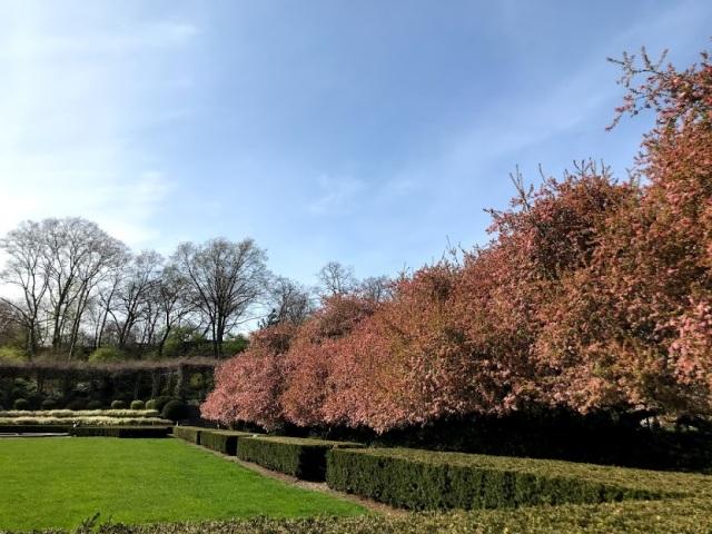 Conservatory Garden 1